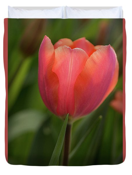 Duvet Cover featuring the photograph Iridescent Tulip by Mary Jo Allen