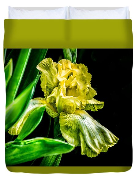 Duvet Cover featuring the photograph Iris In Bloom by Richard Ricci