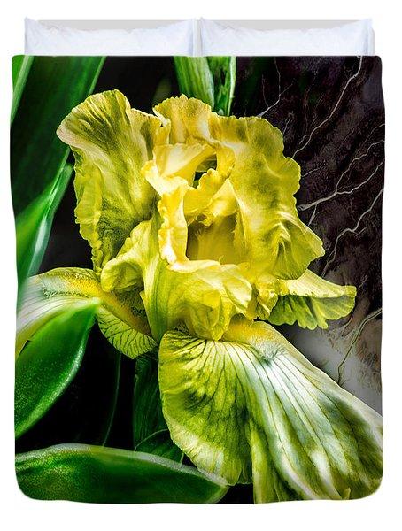 Iris In Bloom Two Duvet Cover