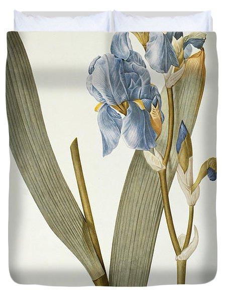 Iris Pallida Duvet Cover