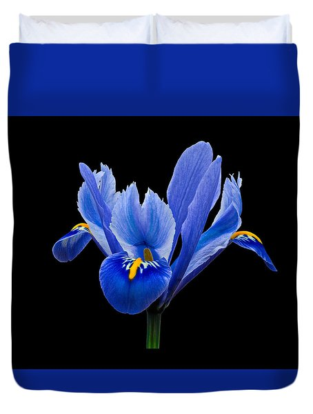 Duvet Cover featuring the photograph Iris Reticulata, Black Background by Paul Gulliver