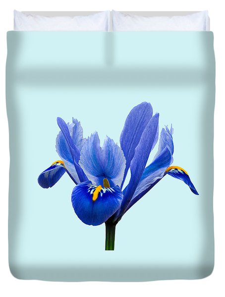Duvet Cover featuring the photograph Iris Reticulata Blue Background by Paul Gulliver