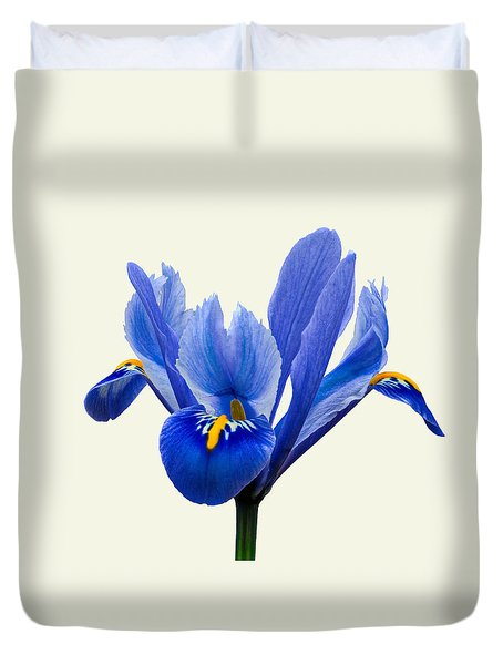 Iris Reticulata, Cream Background Duvet Cover