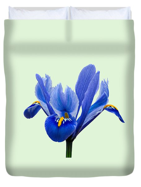 Duvet Cover featuring the photograph Iris Reticulata, Green Background by Paul Gulliver