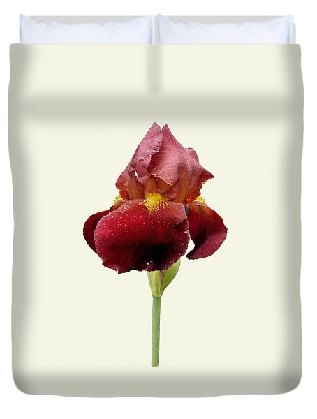 Duvet Cover featuring the photograph Iris Vitafire Cream Background by Paul Gulliver