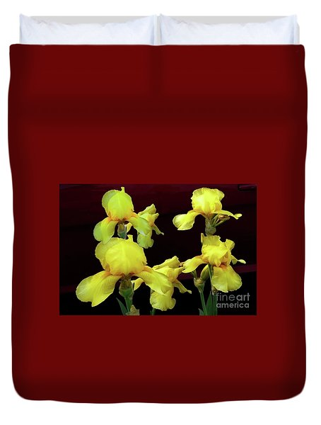 Duvet Cover featuring the photograph Irises Yellow by Jasna Dragun