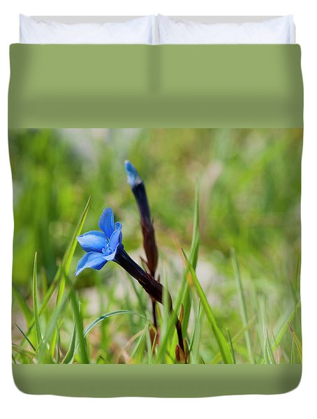 Duvet Cover featuring the photograph Irish Gentians by Rob Hemphill