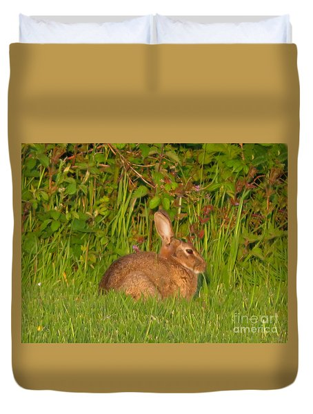 Irish Rabbit Duvet Cover by Cindy Murphy - NightVisions