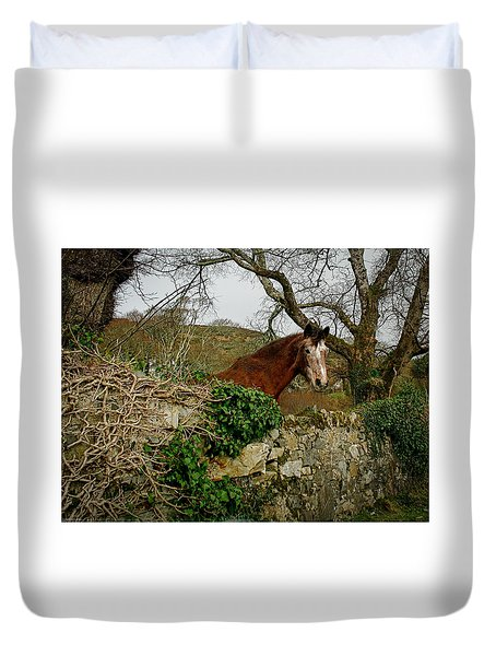 Duvet Cover featuring the photograph Irish Roan by Kathleen Scanlan