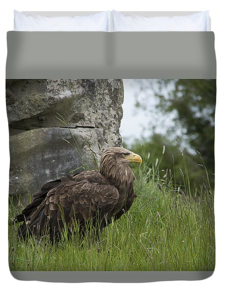 Irish Sea Eagle Duvet Cover