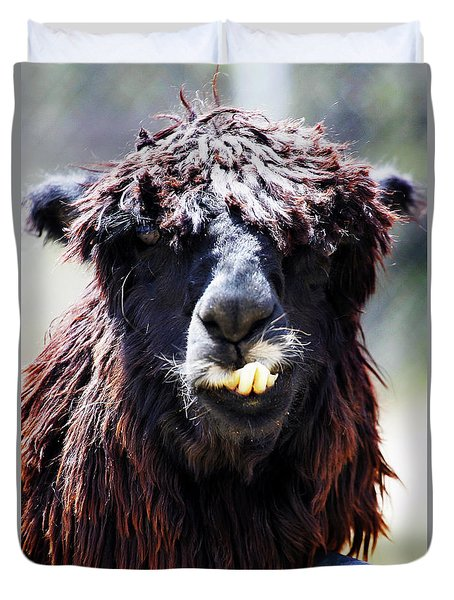 Duvet Cover featuring the photograph Is Your Mama A Llama? by Anthony Jones
