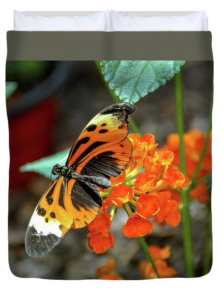 Ismenius Tiger Butterfly Duvet Cover