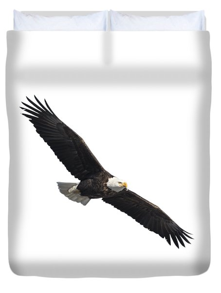 Isolated American Bald Eagle 2016-2 Duvet Cover