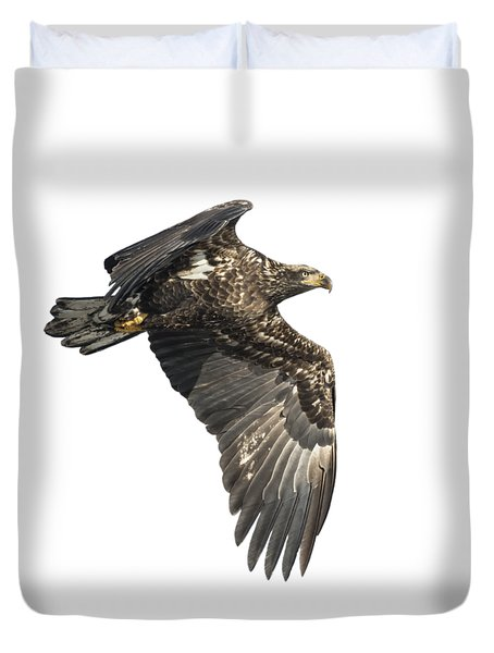 Isolated Eagle 2017-2 Duvet Cover by Thomas Young