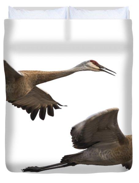 Isolated Sandhill Cranes 2016-1 Duvet Cover