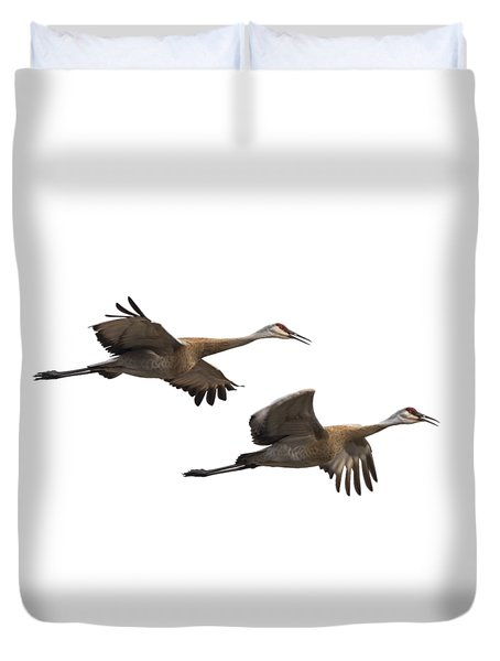 Isolated Sandhill Cranes 2016-1 Duvet Cover