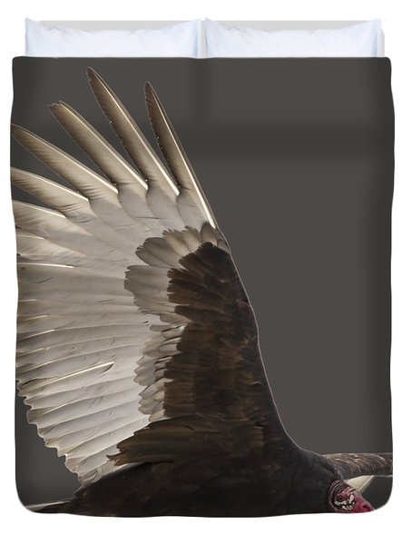 Isolated Turkey Vulture 2014-1 Duvet Cover