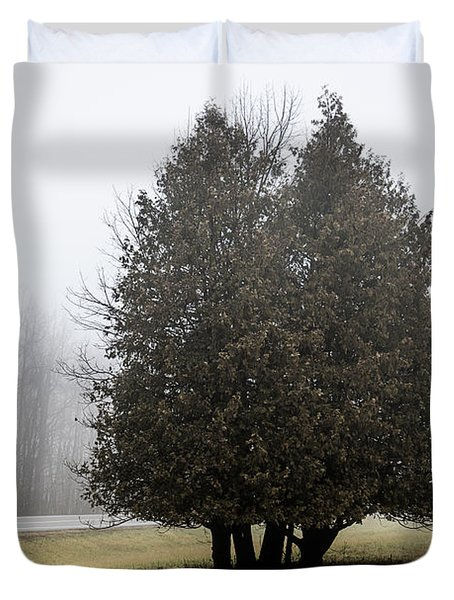 Isolation Duvet Cover by Celso Bressan