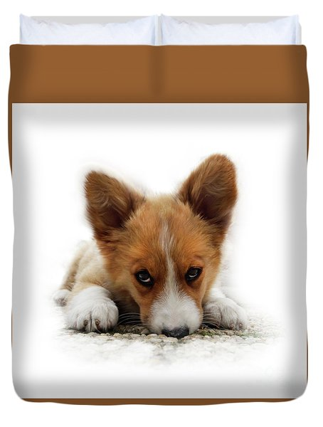 It Wasn't Me Corgi Duvet Cover