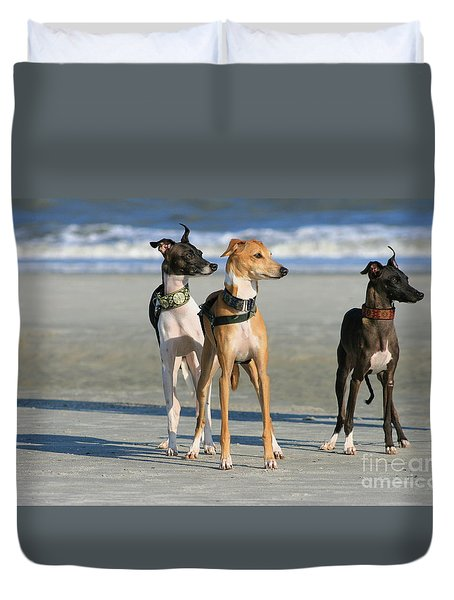 Italian Greyhounds On The Beach Duvet Cover