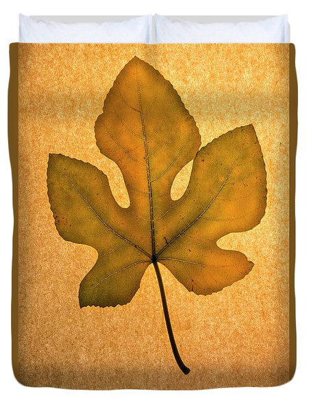 Duvet Cover featuring the photograph Italian Honey Fig Leaf 4 by Frank Wilson