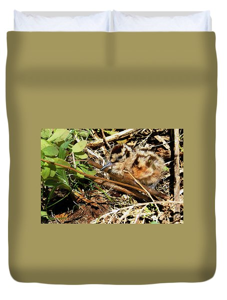 It's A Baby Woodcock Duvet Cover by Asbed Iskedjian