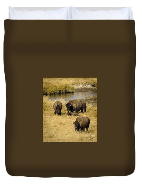 It's A Family Affair Duvet Cover by Sandy Molinaro