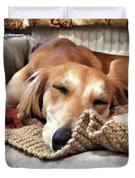 It's Been A Hard Day...  #saluki Duvet Cover by John Edwards