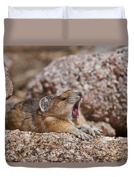 Duvet Cover featuring the photograph It's Been A Long Day by Gary Lengyel