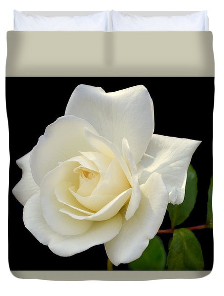 Ivory Rose. Duvet Cover