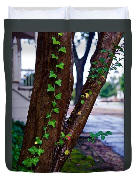 Ivy In Williamsburg Duvet Cover