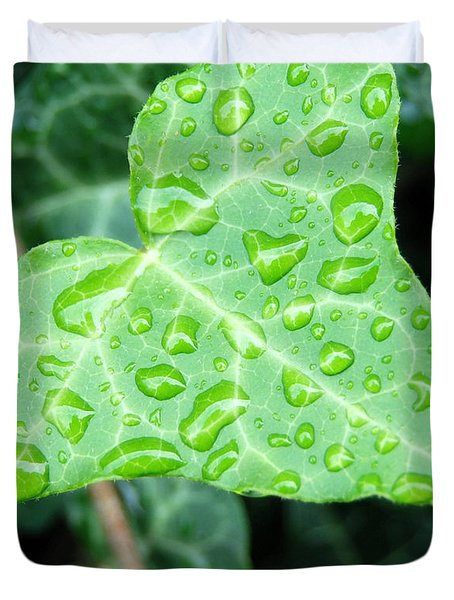 Ivy Leaf Duvet Cover by Michael Peychich