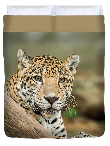 Jaguar Duvet Cover