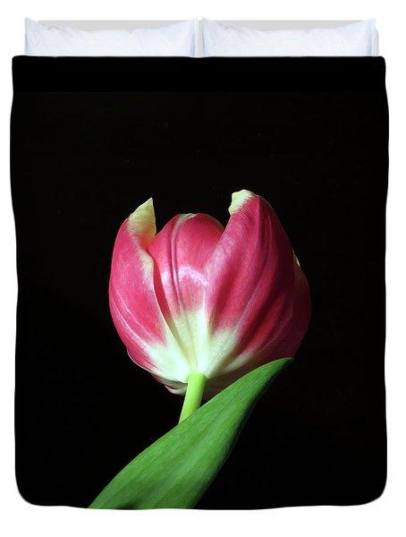 January Red Tulip Duvet Cover