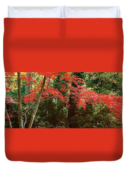Japanese Maple Duvet Cover by John Pagliuca