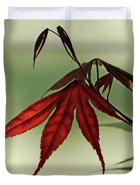 Japanese Maple Leaf Duvet Cover