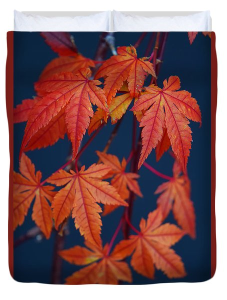 Japanese Maple Leaves In Autumn Duvet Cover by Frank Wilson