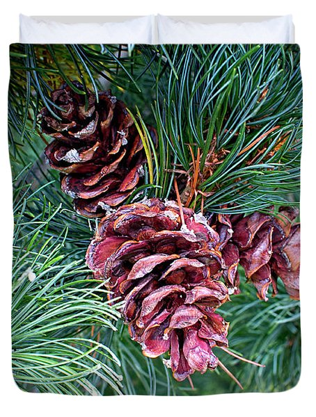Duvet Cover featuring the photograph Japanese White Pine Pinecones by Sharon Talson