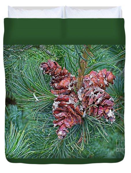 Japanese White Pine Pinecones 2 Duvet Cover