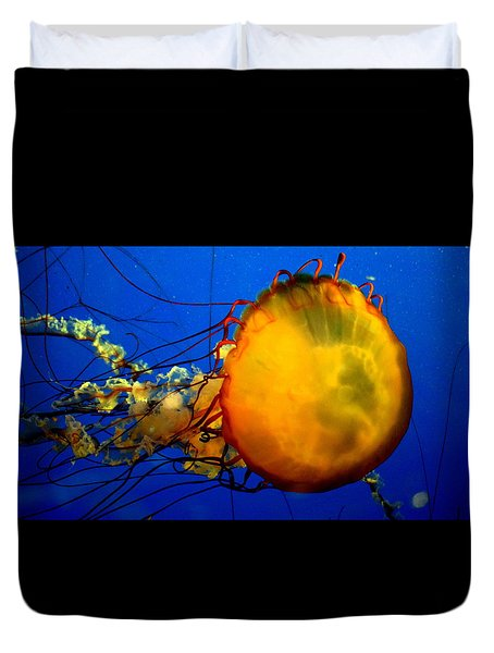 Jellyfish Duvet Cover by David Gilbert