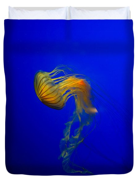 Jellyfish From The Deep Blue Duvet Cover by Nila Newsom