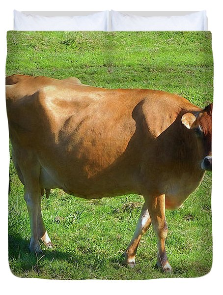 Duvet Cover featuring the photograph Jersey Cow 2 by Sharon Talson