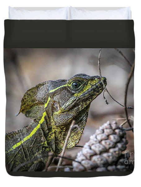 Duvet Cover featuring the photograph Jesus Lizard #2 by Tom Claud