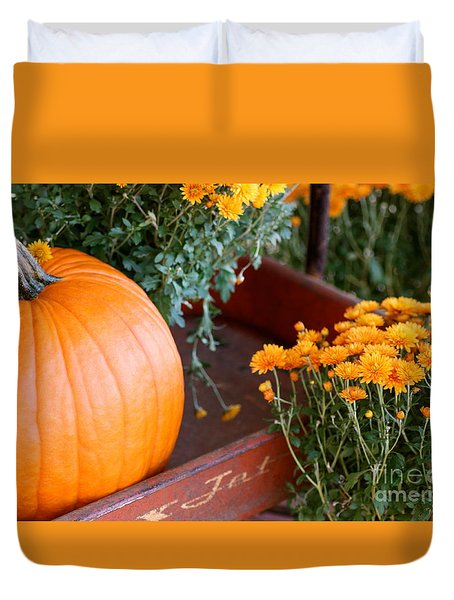 Jet Pumpkin Duvet Cover by Cathy Dee Janes
