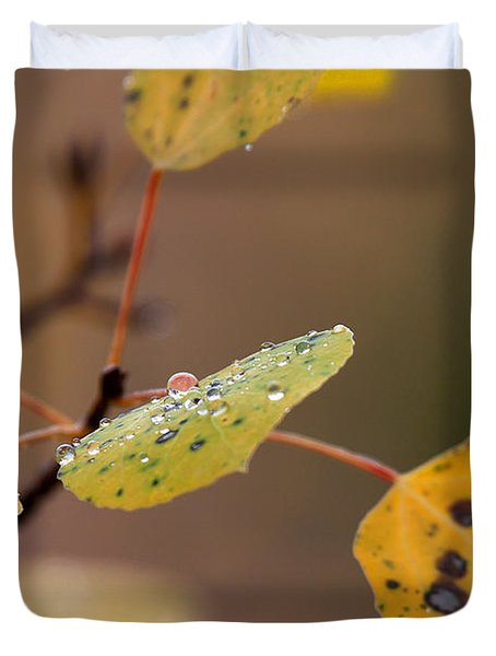 Jewels Of Autumn Duvet Cover
