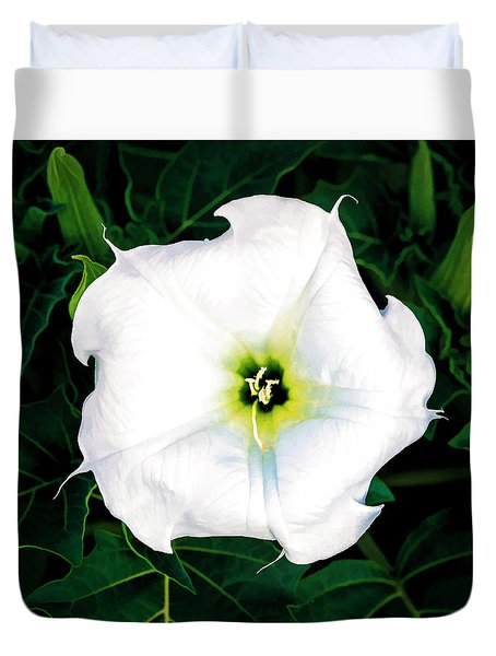 Duvet Cover featuring the photograph Jimson Weed #1 by Lou Novick