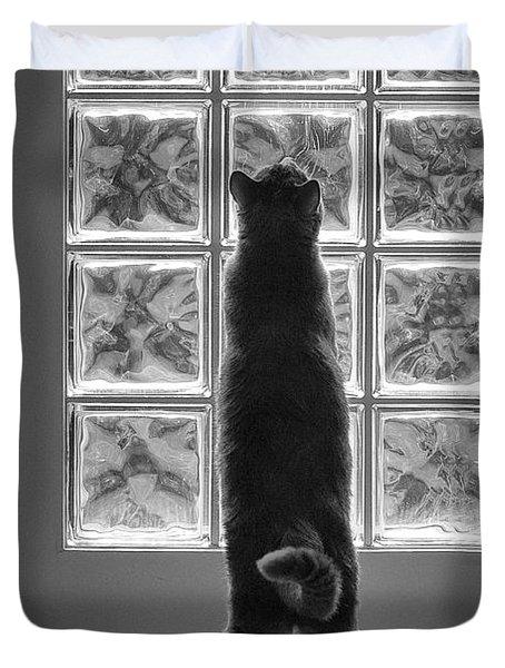 Joseph At The Window Duvet Cover