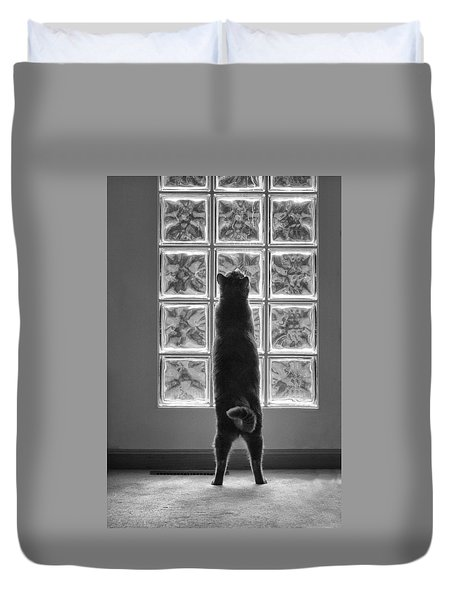 Joseph At The Window Duvet Cover