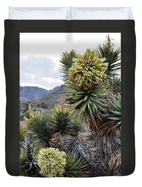 Joshua Tree Bloom Rainbow Mountain Duvet Cover by Kyle Hanson