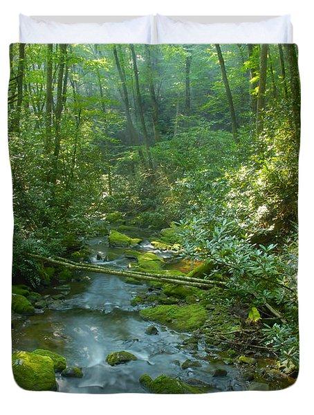 Joyce Kilmer Memorial Forest Duvet Cover by David Lee Thompson